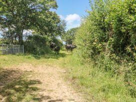 Lower West Curry Farmhouse - Cornwall - 954402 - thumbnail photo 21