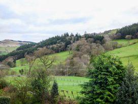 Siskin - North Wales - 954808 - thumbnail photo 15