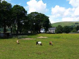 Buttercup Cottage - Peak District - 955085 - thumbnail photo 16