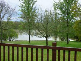 Chaffinch - Devon - 955403 - thumbnail photo 2