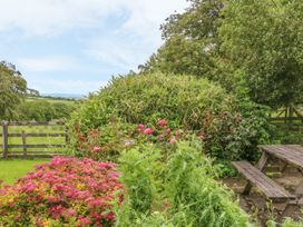 Barn Cottage - Devon - 955864 - thumbnail photo 23