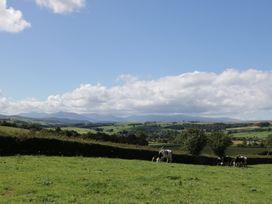 Bryn Dedwydd Farmhouse - North Wales - 955872 - thumbnail photo 31