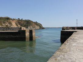 Salty Dog - Cornwall - 956916 - thumbnail photo 26