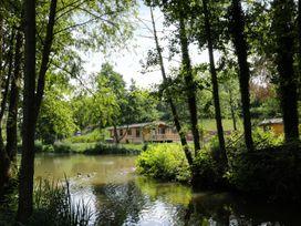 Kingfisher - Herefordshire - 957169 - thumbnail photo 19