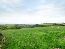 Shears - Cornwall - 957589 - thumbnail photo 19