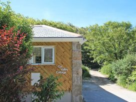 Cot Valley Cottage - Cornwall - 959067 - thumbnail photo 19