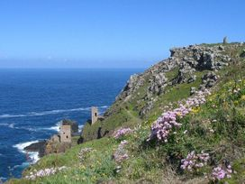 Parc An Castle Cottage - Cornwall - 959147 - thumbnail photo 18