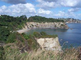 Leghorn - Cornwall - 959565 - thumbnail photo 17