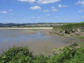 Leghorn - Cornwall - 959565 - thumbnail photo 14