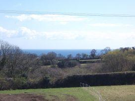 Leghorn - Cornwall - 959565 - thumbnail photo 13