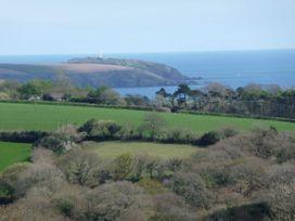 Leghorn - Cornwall - 959565 - thumbnail photo 2