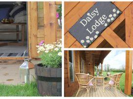 Daisy Lodge - Cornwall - 959568 - thumbnail photo 5