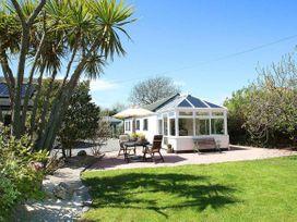 Little Palm Trees - Cornwall - 959651 - thumbnail photo 1