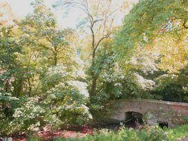 Treetops Lodge - Devon - 959682 - thumbnail photo 21