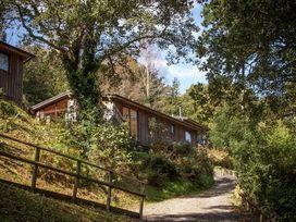 Treetops Lodge - Devon - 959682 - thumbnail photo 20