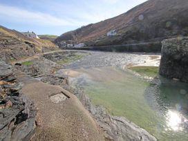 Brambles - Cornwall - 959770 - thumbnail photo 22