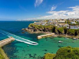 Brambles - Cornwall - 959770 - thumbnail photo 24