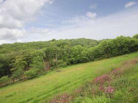 Oakwood - Cornwall - 959838 - thumbnail photo 22