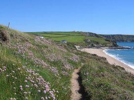 Bosgilly - Cornwall - 959868 - thumbnail photo 21