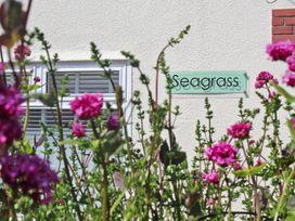 Seagrass - Cornwall - 959875 - thumbnail photo 11