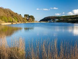 Willow - Cornwall - 959925 - thumbnail photo 24