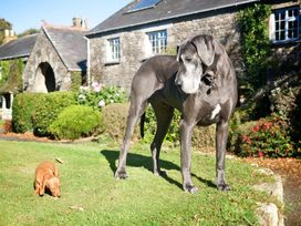 Blacksmith's Cottage - Cornwall - 959955 - thumbnail photo 20