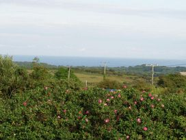 Halvosso - Cornwall - 959964 - thumbnail photo 2