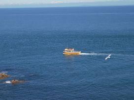 Ocean Breeze - Devon - 960154 - thumbnail photo 17