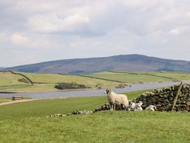 Rowan Bank, Jacobs Wood - Yorkshire Dales - 960698 - thumbnail photo 27