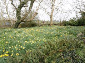 Bodegri Cottage - Anglesey - 961817 - thumbnail photo 21