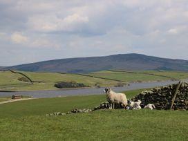 Crane Field Laithe - Yorkshire Dales - 962454 - thumbnail photo 30