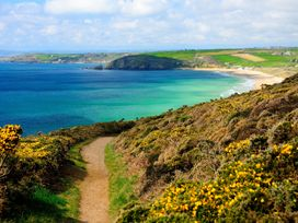 The Little Place - Cornwall - 962948 - thumbnail photo 21