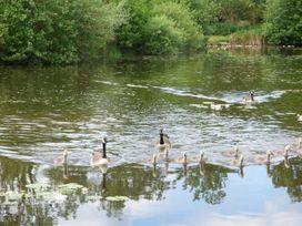 Lakeside Lodge - Norfolk - 963052 - thumbnail photo 14