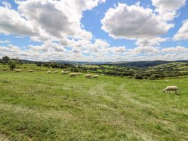 Meadow View - Mid Wales - 963226 - thumbnail photo 13