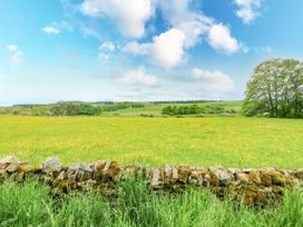 Pheasant - Yorkshire Dales - 963684 - thumbnail photo 22