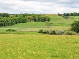Pheasant - Yorkshire Dales - 963684 - thumbnail photo 23