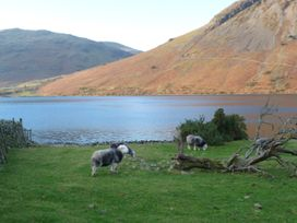 Harbourside House - Lake District - 964249 - thumbnail photo 33