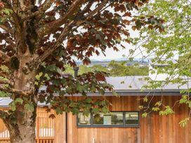 Beech - Cornwall - 967690 - thumbnail photo 3