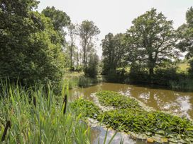 Pond View - South Coast England - 967959 - thumbnail photo 16