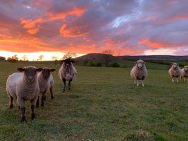 Cuthbert Hill Farm - Lake District - 968501 - thumbnail photo 48