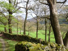 Knott Lodge - Lake District - 968844 - thumbnail photo 16