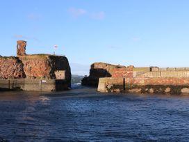 Harbour View - Scottish Lowlands - 970493 - thumbnail photo 20