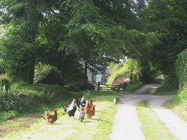 2 Bittadon Cottages - Devon - 970704 - thumbnail photo 35