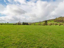 Blaen Henllan - Mid Wales - 971382 - thumbnail photo 22