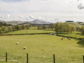 Cyffdy Cottage - Arenig - North Wales - 971763 - thumbnail photo 19