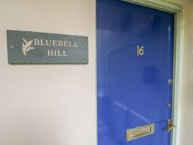 Bluebell Hill - Lake District - 972559 - thumbnail photo 2