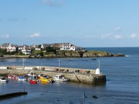 Angorfa - Anglesey - 973741 - thumbnail photo 36