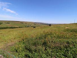 The Long View - Yorkshire Dales - 974343 - thumbnail photo 52