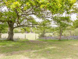 Pheasant Lodge at Chapel Lodges - Dorset - 974603 - thumbnail photo 21