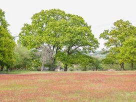 Pheasant Lodge at Chapel Lodges - Dorset - 974603 - thumbnail photo 22